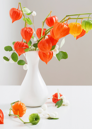 red physalis on wooden table Stock Photo