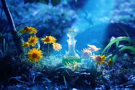 Magiczna mikstura w butelce w lesie Zdjęcie Seryjne