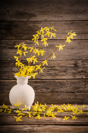yellow spring flowers on old wooden background Stock Photo