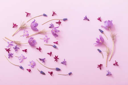 spring flowers on paper background Stock Photo