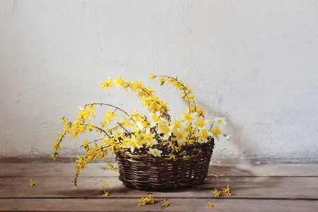 yellow spring flowers in basket on background old wall