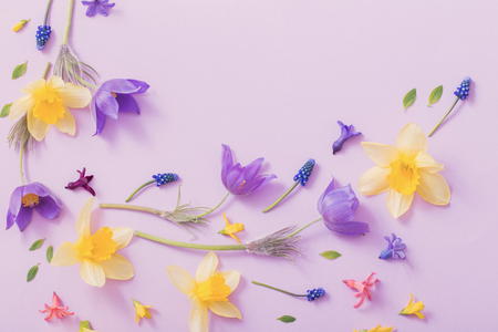 spring flowers on paper background Banque d'images
