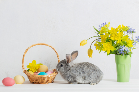 bunny with easter eggs and flowers on white background Stock Photo