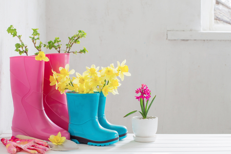 rubber boots and spring flowers on white background