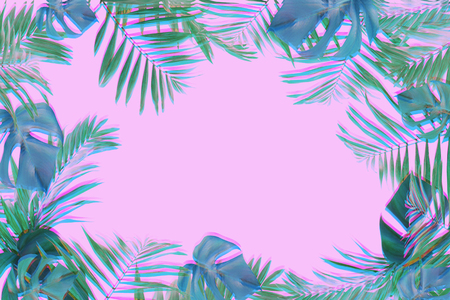 frame of palm and monstera leaves with glitch effect