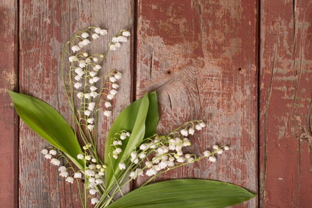 lilies of the valley on  wooden background Stock fotó