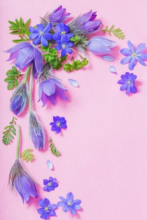 belles fleurs de printemps sur fond rose