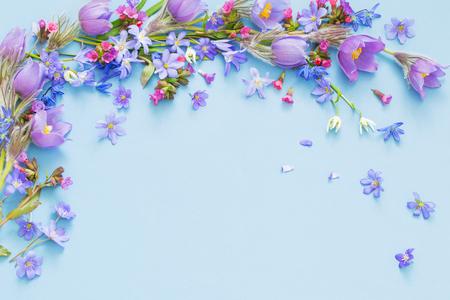bellissimi fiori primaverili su sfondo blu