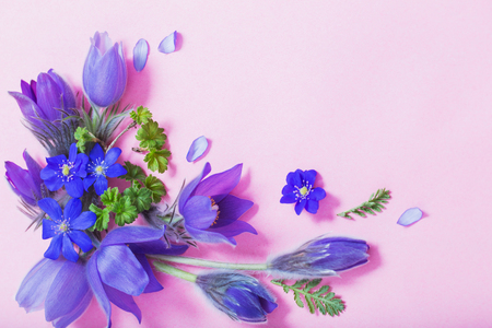 beautiful spring flowers on pink  background