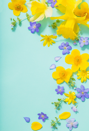 spring flowers on green background