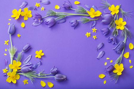 fleurs de printemps violet et jaune sur fond de papier violet Banque d'images