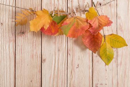hojas de otoño de color sobre fondo de madera Foto de archivo