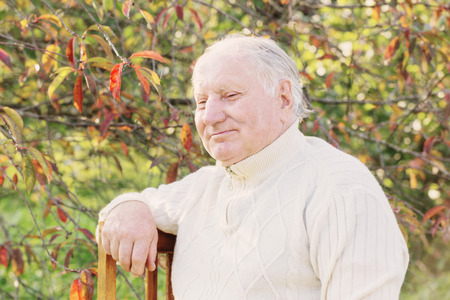 Porträt des älteren Mannes im sonnigen Park Standard-Bild