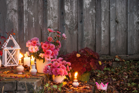 chrysanthemums with burning candles in the autumn garden