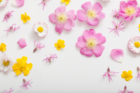 pink and yellow summer flowers on white background