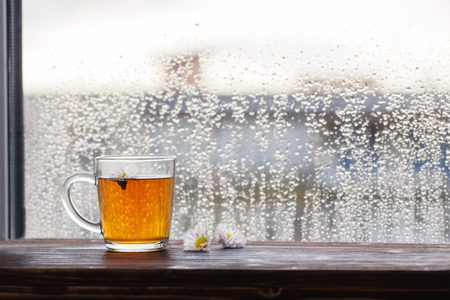 cup of tea with chamomile flowers on  background of  window with raindrops at sunset Standard-Bild - 124556054