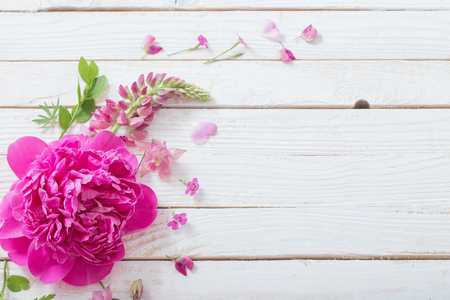 pink beautiful flowers on white wooden background Standard-Bild - 124556064