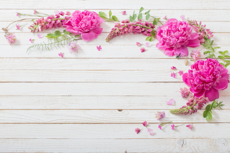 pink beautiful flowers on white wooden background