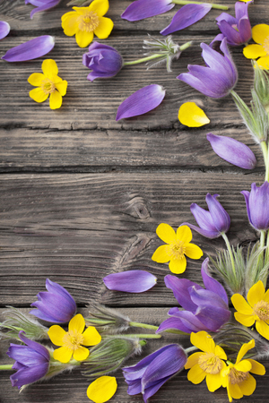 spring purple and yellow  flowers on old wooden background