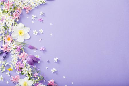 beautiful spring flowers on paper background Standard-Bild - 124556162