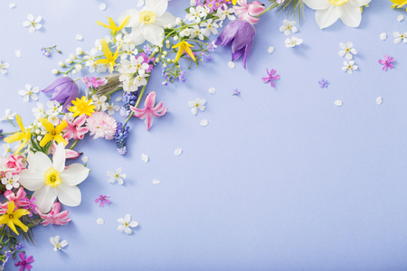 beautiful spring flowers on paper background Standard-Bild - 124556166