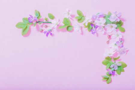 white and blue flowers on pink paper background