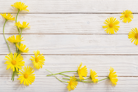 doronicum flowers on painted wooden background Banco de Imagens