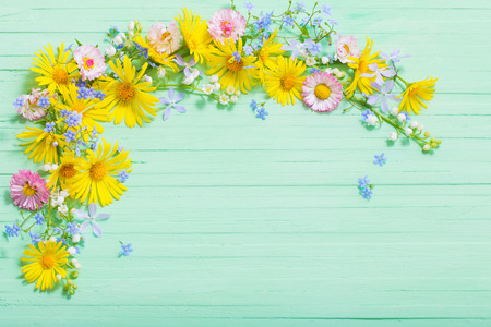 frame of beautiful flowers on green wooden background Standard-Bild - 124556183
