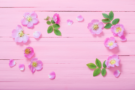 Rahmen aus rosa Rosen auf rosa Holzuntergrund
