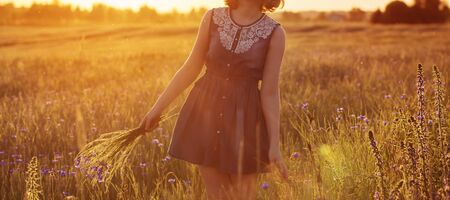 beautiful teenager girl in summer field with cornflower Banco de Imagens