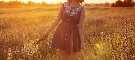 schönes Teenager-Mädchen im Sommerfeld mit Kornblume