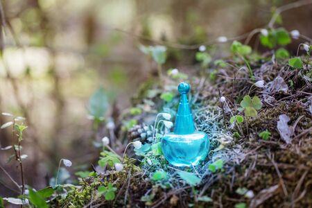 magic potion on bottle in forest Foto de archivo