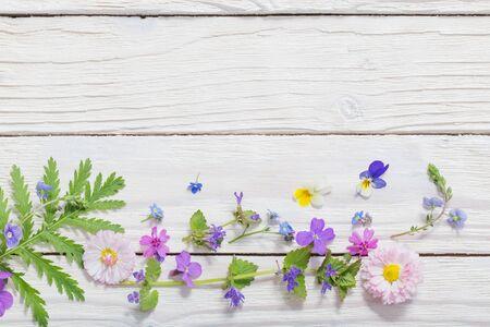 bellissimi fiori su fondo in legno Archivio Fotografico