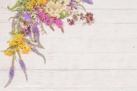 wildflowers on white wooden background 免版税图像