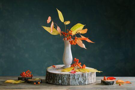 still life with rowan berries on  dark background
