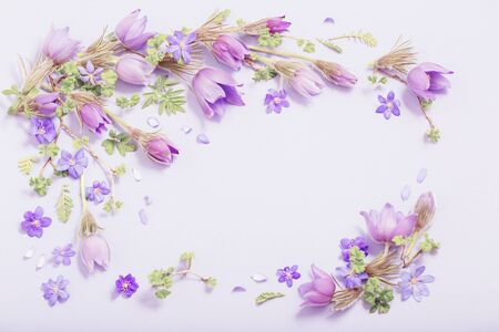 beautiful spring flowers on purple  background Stock Photo