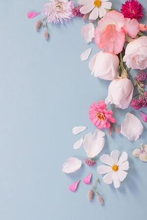 summer flowers on blue paper background