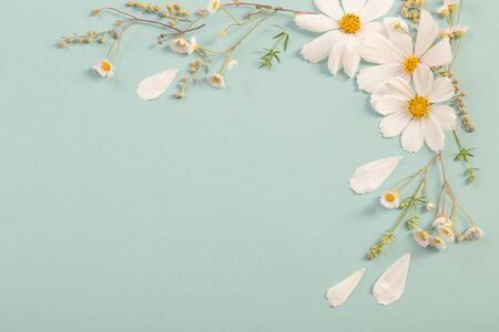 white flowers on paper background