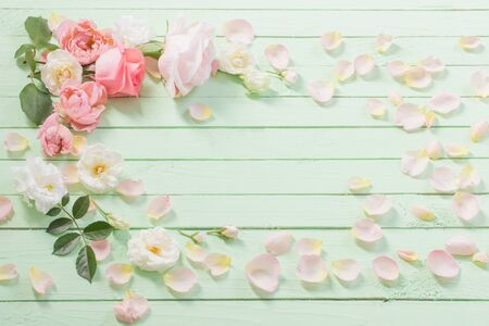 pink and white roses on green wooden background