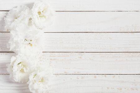 white  eustoma on white wooden background