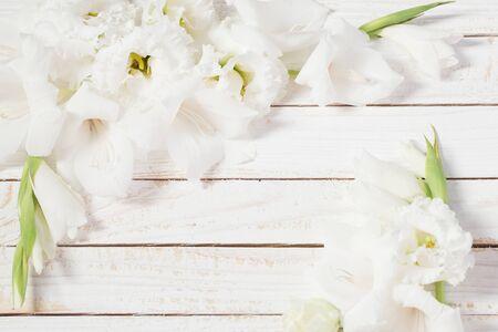 white gladiolus and eustoma on white wooden background