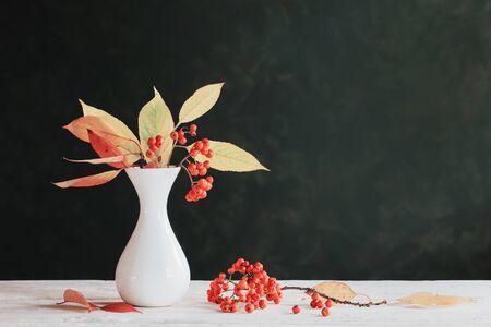 still life with rowan berries on dark background Stock Photo