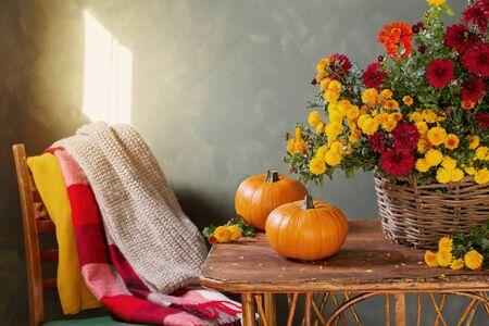 natura morta con crisantemi in cesto e zucche su mensola in legno