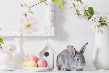 bunny with easter eggs on white background Stock Photo - 131935952