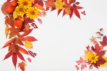Herbstlaub und Blumen auf weißem Hintergrund