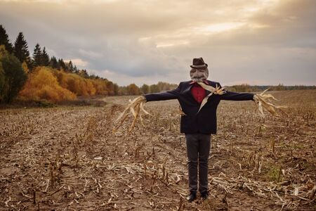 scarecrow stands in the autumn field against the evening sky 版權商用圖片