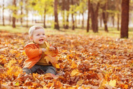 pequeño bebé en el soleado parque de otoño