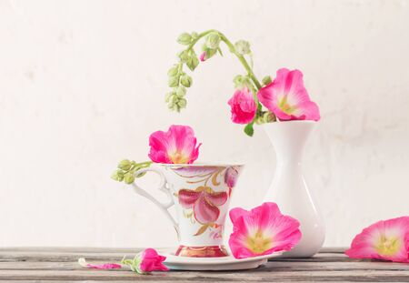 still life with pink mallow on white background