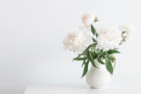 Pfingstrosen Blumen in Vase auf weißem Hintergrund