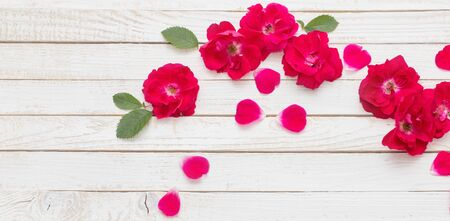 red roses on white wooden background Banco de Imagens